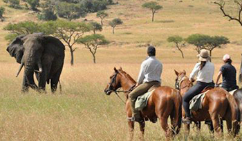 What to do in Lake Mburo